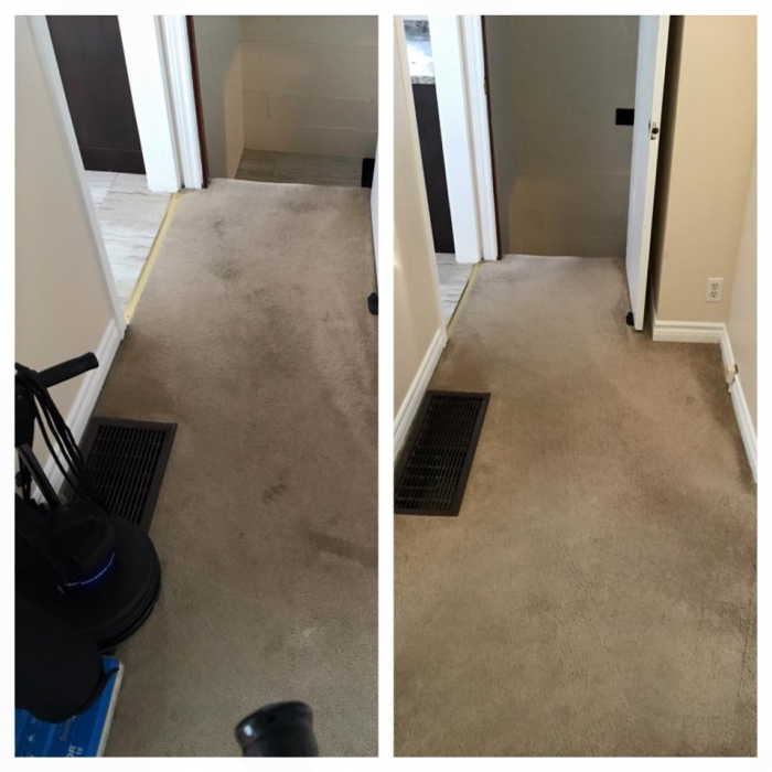Roto Static Barrie Carpet Cleaning Barrie Ontario